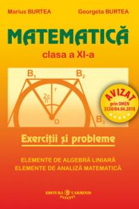 MATEMATICA. EXERCITII SI PROBLEME. CLASA A XI-A. M11