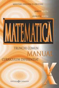 MATEMATICA TRUNCHI COMUN + CURRICULUM DIFERENTIAT. MANUAL PENTRU CLASA A X-A. M10/1